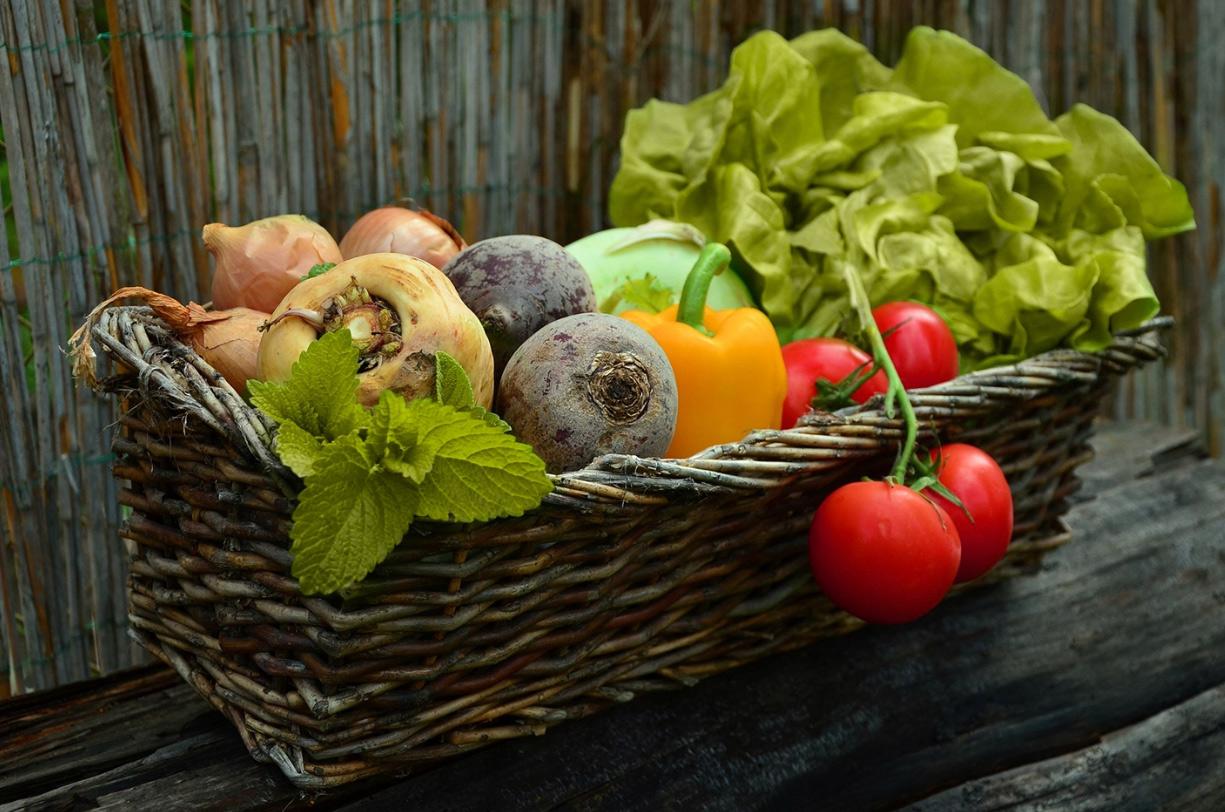 Tunel foliowy warzywa z własnej uprawy